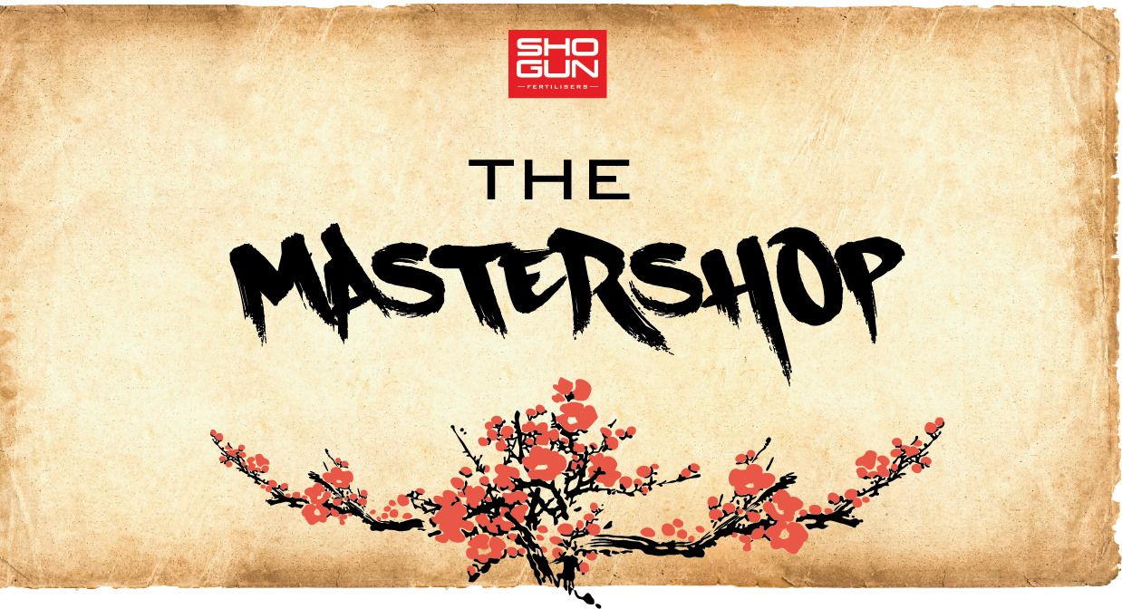 The MasterShop