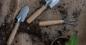 Soil to Soilless - A Guide to Growing Media